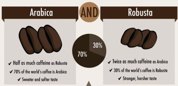 What-difference-between-arabica-and-robusta-coffee-beans