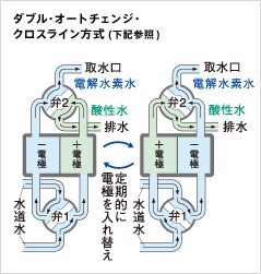 trim ion 5HX