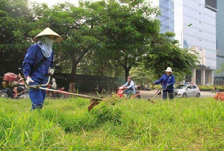 Nguyên lý hoạt động của máy cắt cỏ
