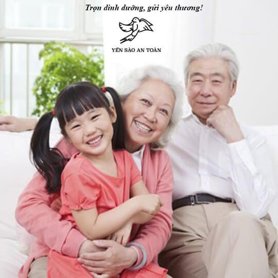Tác dụng của yến sào đối với người lớn tuổi