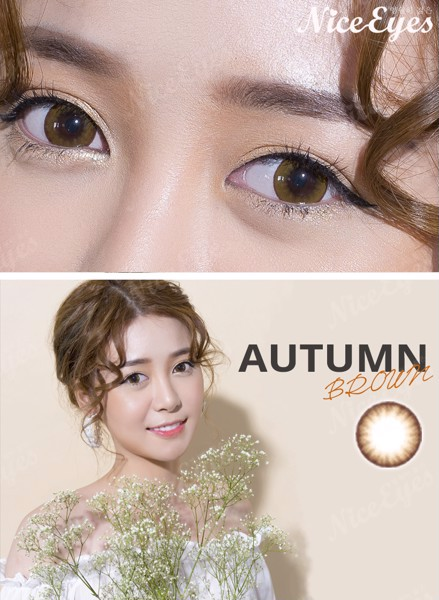 kinh ap trong silicone hydrogel autumn brown can mat