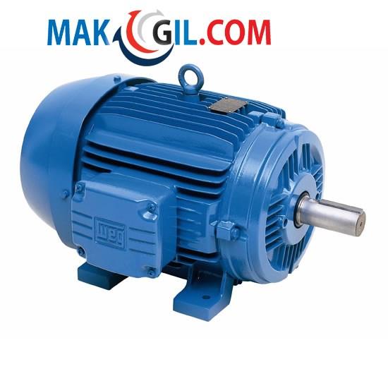 Động cơ điện (Motor điện)