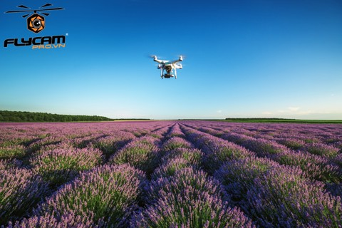 essential-drone-travel-tips-everything-you-need-to-know