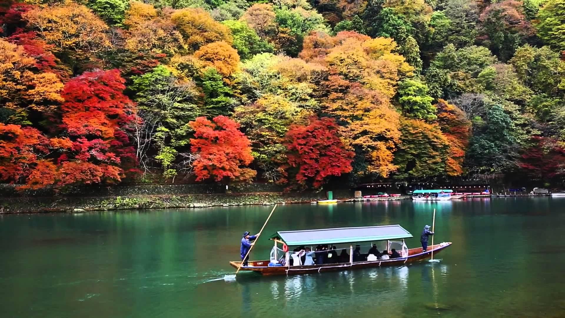 Chiêm ngắm vẻ đẹp tuyệt vời ở công viên Arashiyama, Tokyo