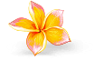 Giới thiệu về Suplo Beauty & Clinic