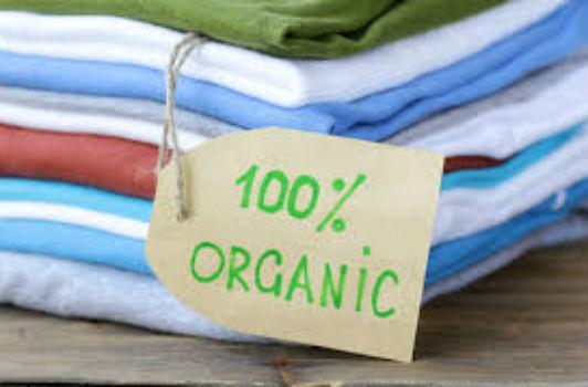Cotton Gỗ - Loại Vải Mới Được Tin Dùng Nhất Hiện Nay