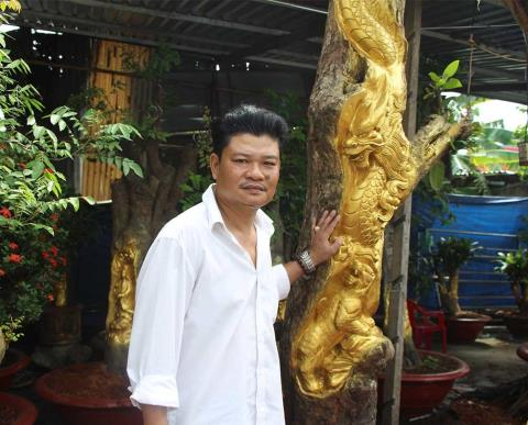 Dát vàng lên cây đang sinh trưởng