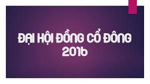 Biên bản họp Đại hội đồng cổ đông thường niên 2016
