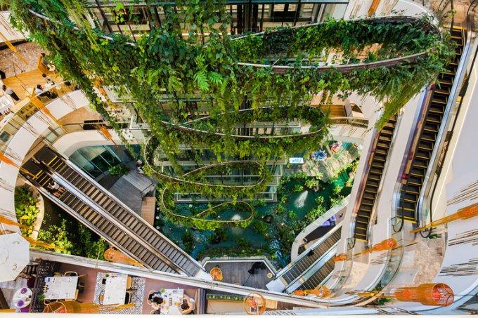 Trung tâm thương mại ở Thái Lan chứa cả thác nước và 'rừng nhiệt đới'