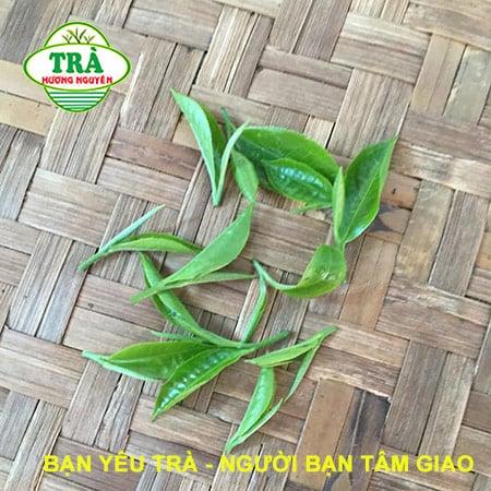 5 Loại chè ngon nức tiếng của Thái Nguyên nên thử một lần
