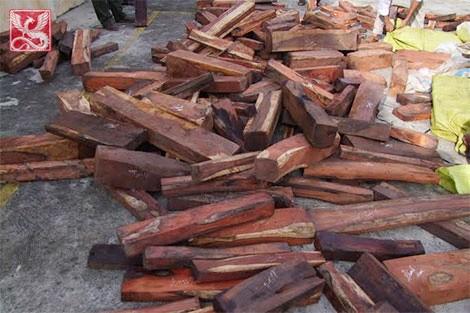 gỗ trắc