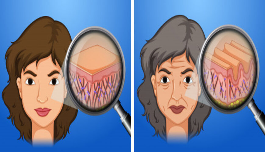 khi nào bạn nên bổ sung peptide cho da