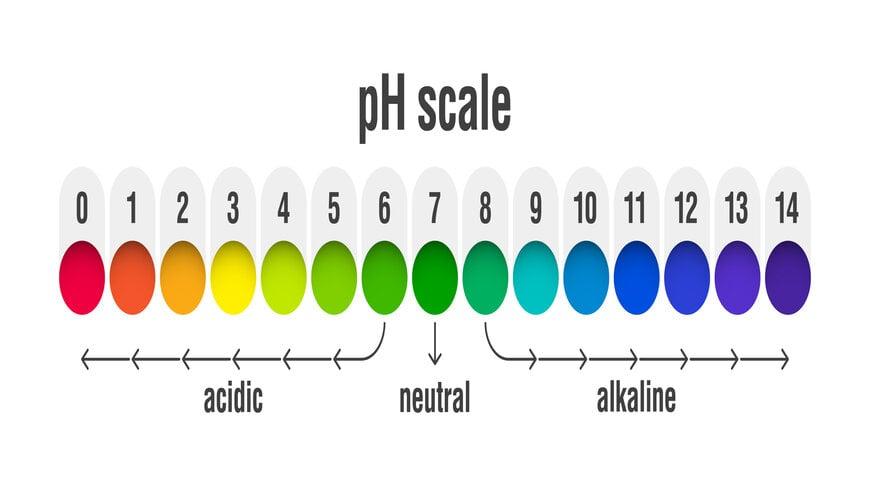 môi trường pH sử dụng niacinamide