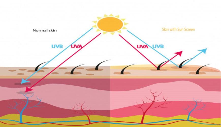 tia UV cũng là một nguyên nhân gây ra tình trạng da khô bong tróc