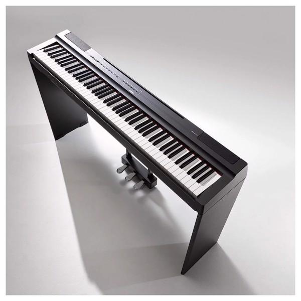 Địa điểm mua đàn piano điện giá rẻ ở TPHCM