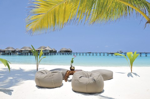 Beanbag For Hotel & Resort