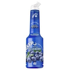 mixer blueberry