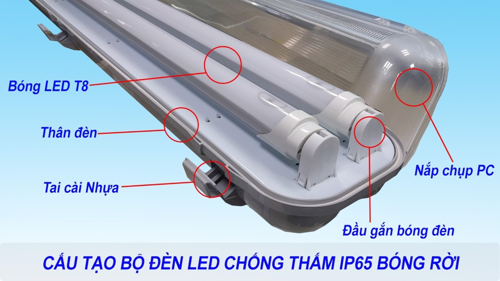 cấu tạo Waterproof Led Double Tube IP65 0,6m/2x9W