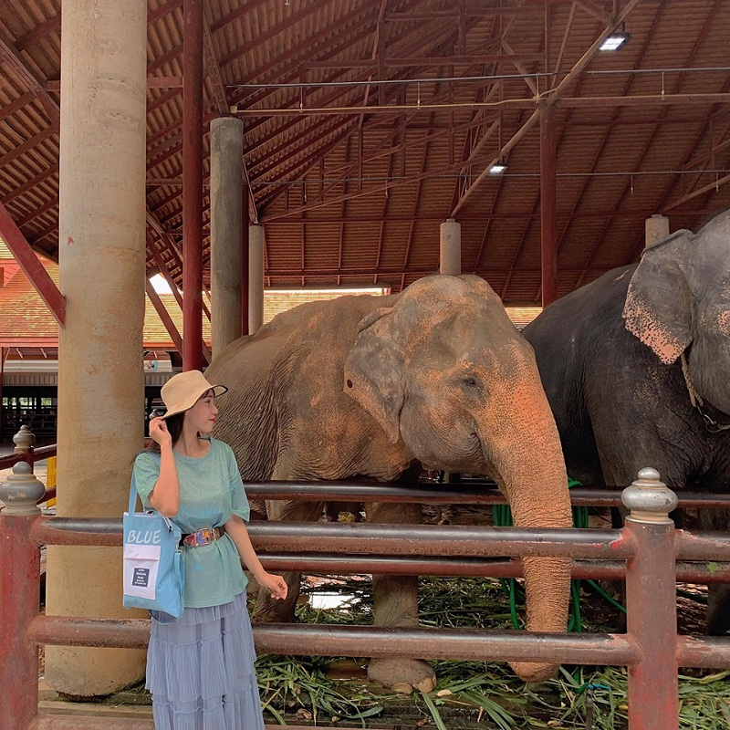 đi từ bangkok đến pattaya