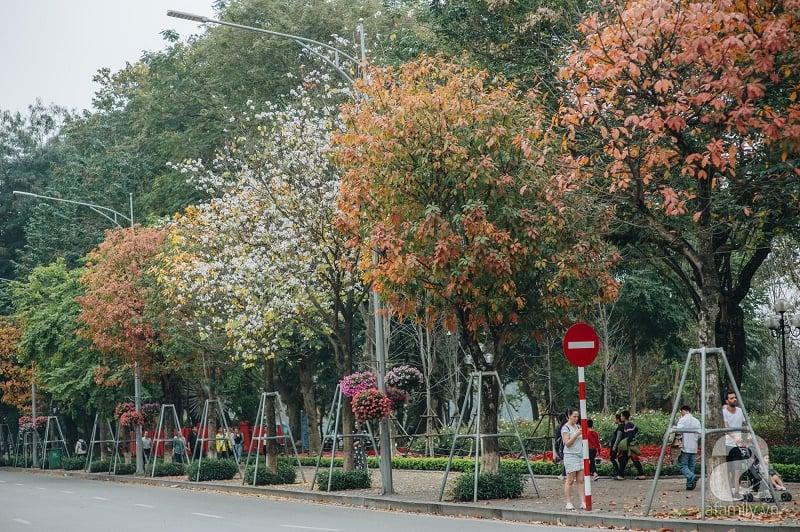 đường phố Hà Nội mùa thu