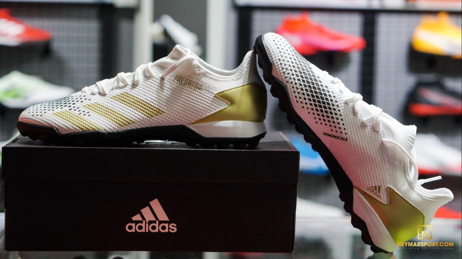 Vẻ đẹp của của adidas Predator 20.3 Low TF Inflight