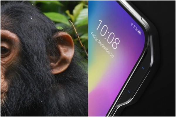 smartphone hải phòng