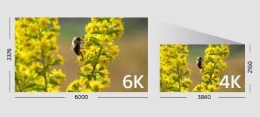 65004k_grande.jpg