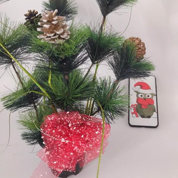 Cây thông trang trí Noel mini gắn trái thông