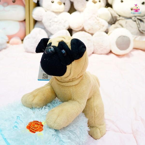 Chó pug mặt đen 40cm