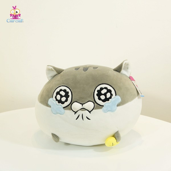 Đầu mèo Ami khóc mịn