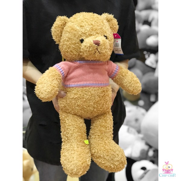 Gấu lông chỉ mang áo gấu hồng tím 50cm