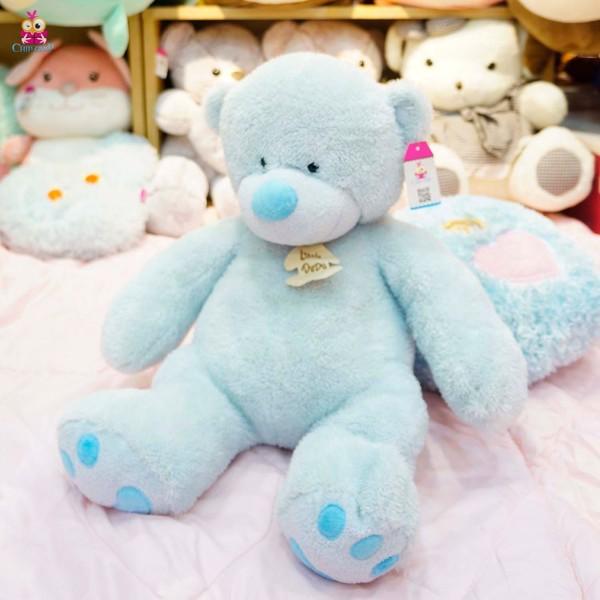 Gấu xanh 60cm