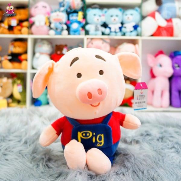 Heo áo pig 40cm