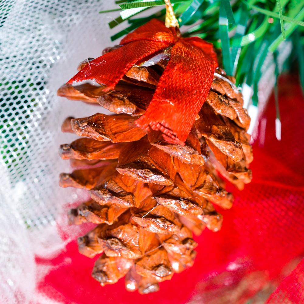 Thông nâu trang trí Noel