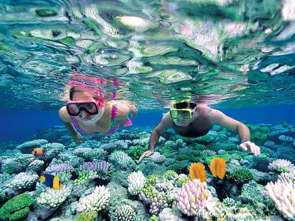 Phân biệt giữa lặn Snorkeling ( lặn ống thở) và Diving ( lặn bình dưỡn - Vài Thứ Hay