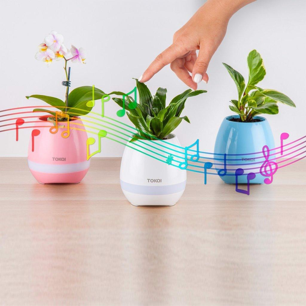 Chậu trồng cây TOKQI tạo ra âm nhạc
