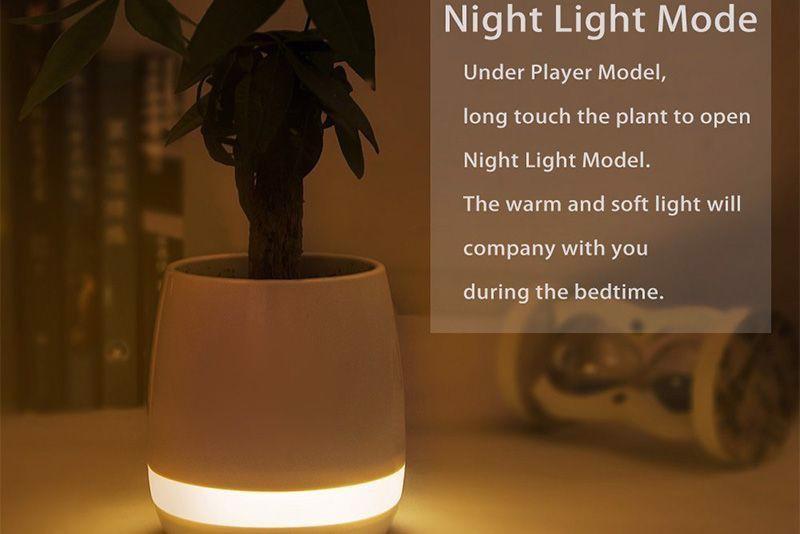 Làm đèn ngủ dịu nhẹ với chậu cây âm nhạc