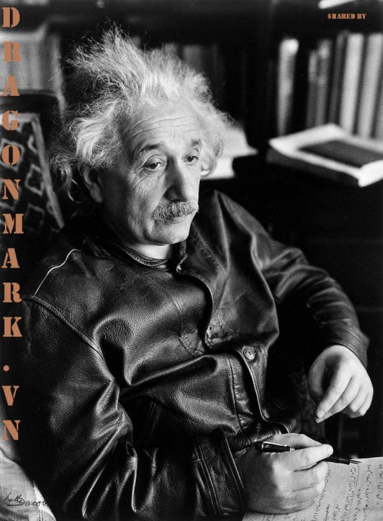albert-einstein-leather-jacket 3