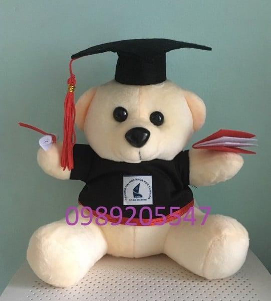 Gấu bông tốt nghiệp Đại học Kinh tế Luật