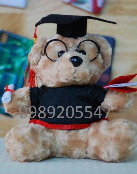 Gấu bông tốt nghiệp Đại học Hoa Sen