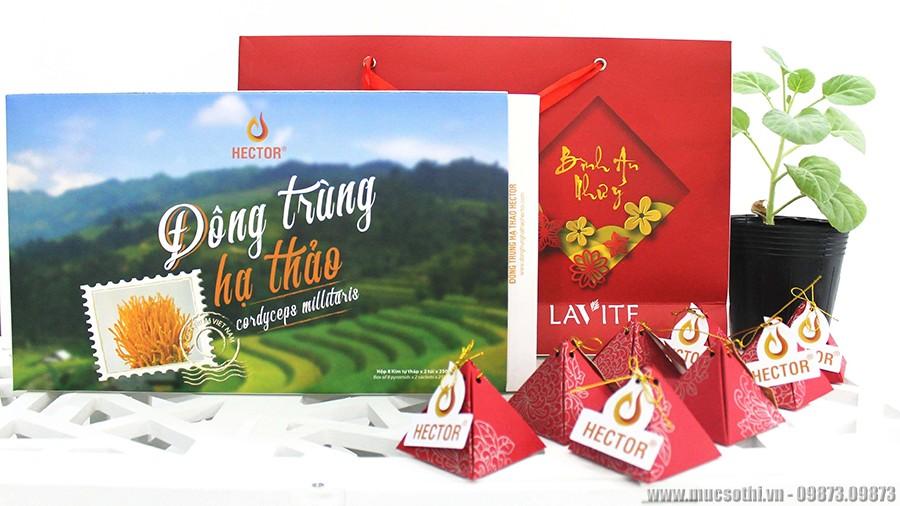 Smartphonestore.vn - Chuyên cung cấp trà đông trùng hạ thảo phúc thọ thương hiệu Hector chính hãng - 09175.09195