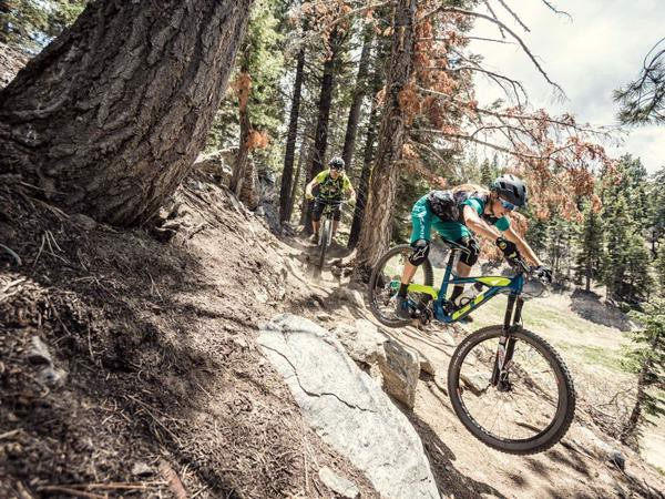 HARDTAIL OR FULL SUSPENSION – WHICH BIKE IS RIGHT FOR YOU?
