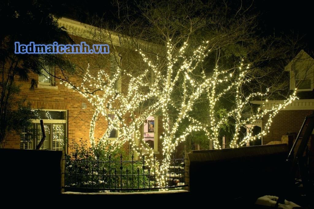 đèn trang trí cây ngoài trời sáng đẹp giá rẻ
