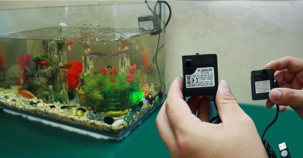 lưu ý khi dùng máy bơm nước bể cá