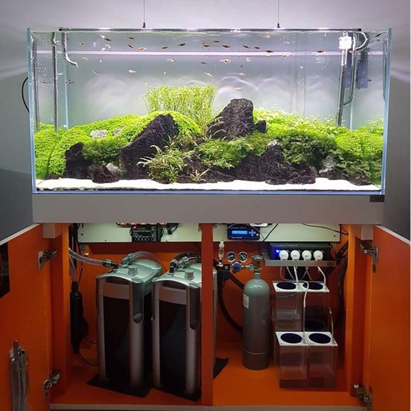 máy lọc thùng cho bể cá
