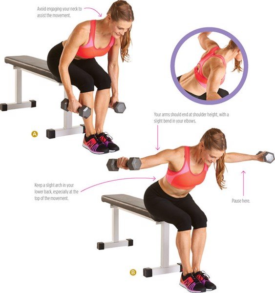 Seated Dumbbell Fly