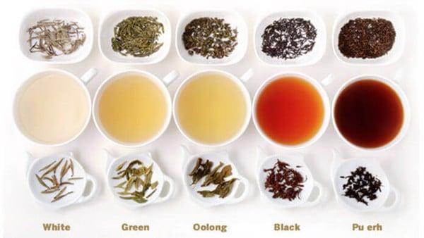 Các loại trà dùng trong pha chế đồ uống