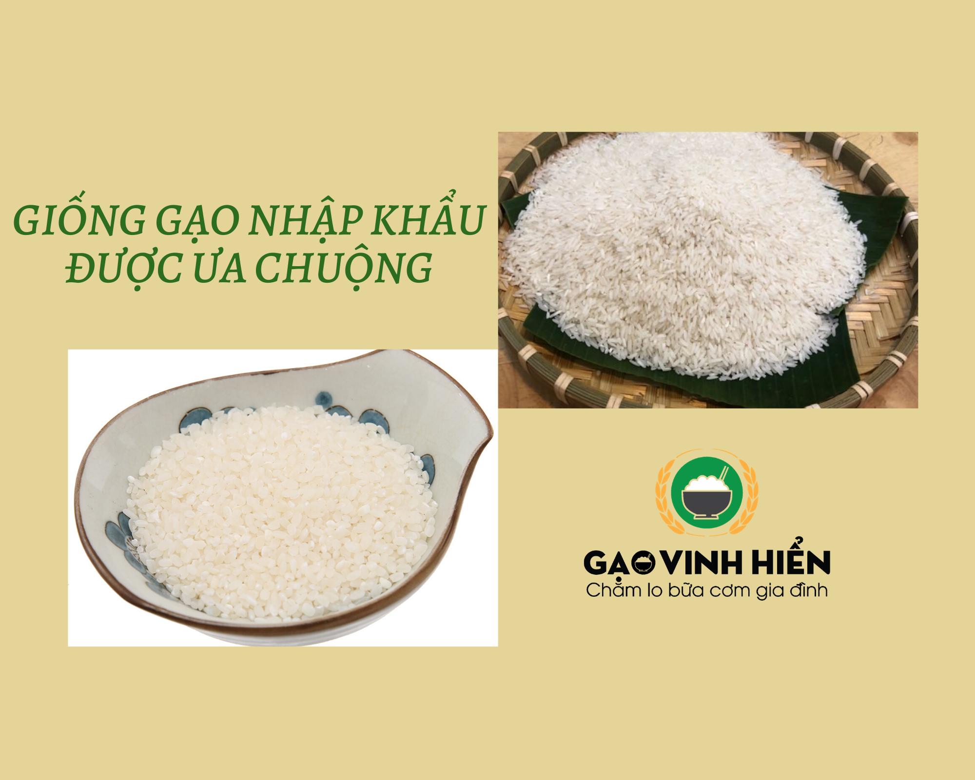 Đâu là loại gạo nhập khẩu được người Việt yêu thích nhất?