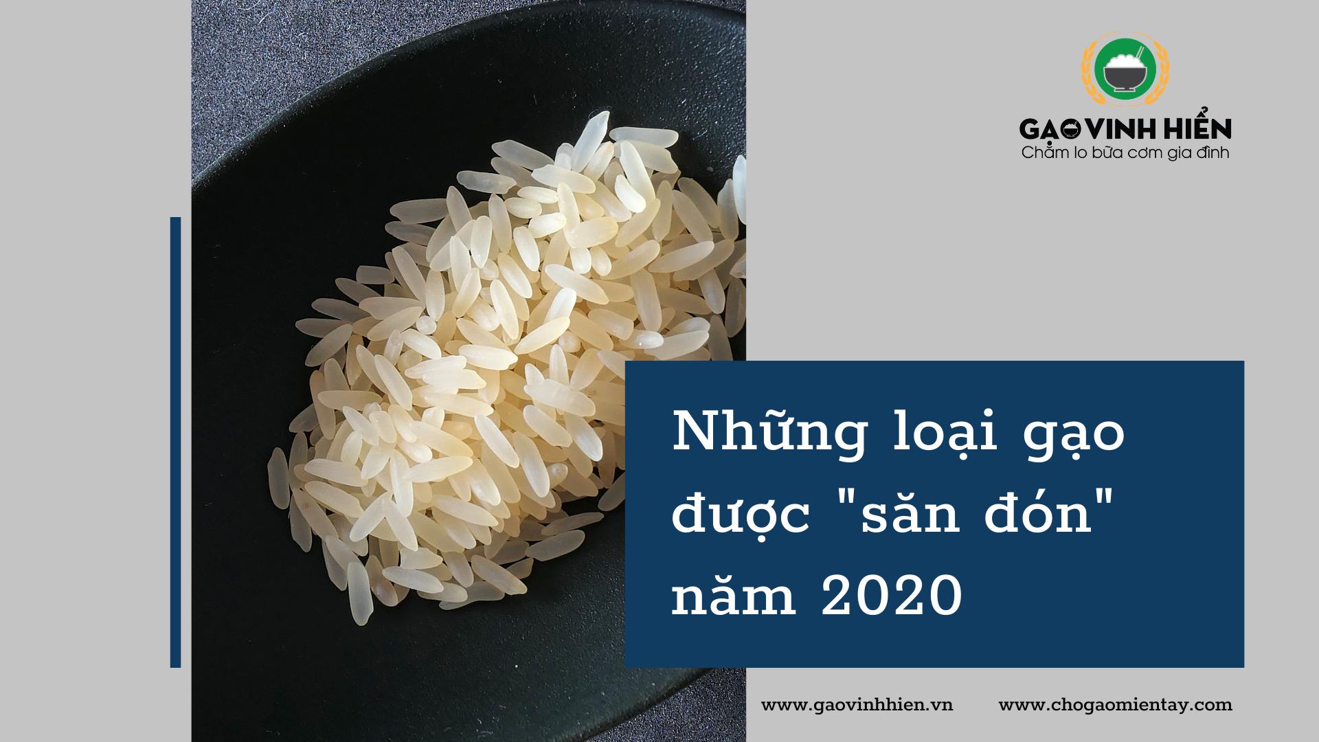 Những loại gạo nào được người tiêu dùng