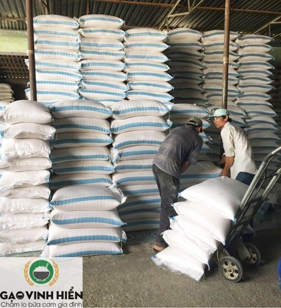 Bao gạo 50kg